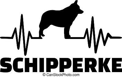 Schipperke heartbeat word