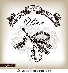 schizzo, albero, stile, illustrazione, mano, ramo, oliva, disegnato