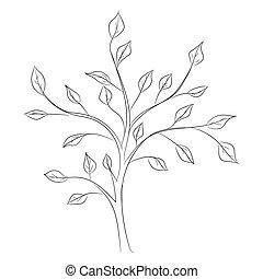 schizzo, albero