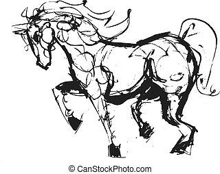 schizzo, cavallo