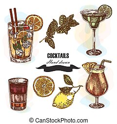 schizzo, cocktail, set., illustrazione, mano, vettore, ...