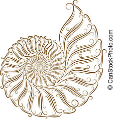 schizzo, di, seashells
