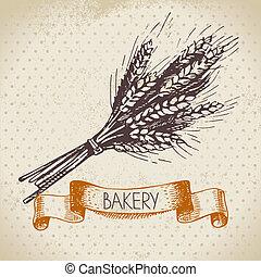 schizzo, frumento, vendemmia, illustrazione, mano, fondo., panetteria, disegnato