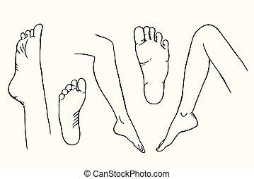schizzo, gambe