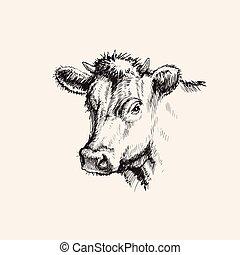 schizzo, mucca, illustrazione, mano, vettore, disegnato