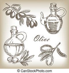 schizzo, set., stile, illustrazione, mano, vettore, oliva, disegnato