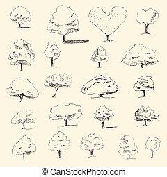 schizzo, set, vendemmia, albero, mano, vettore, disegnato, stile