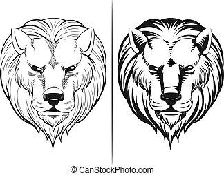 schizzo, testa, leone