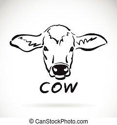 schizzo, testa mucca, mano, fondo., vettore, disegno, animale, bianco