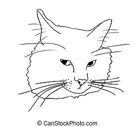schizzo, triste, contorno, illustrazione, dipinto, isolato, gatto, vettore, nero, colori, bianco, mano, disegno