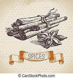 schizzo, vendemmia, mano, erbe, cannella, fondo, disegnato, ...