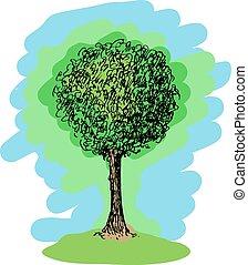 schizzo, vettore, albero, colorito