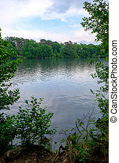 schlachtensee, lago, árvores
