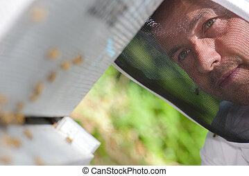 schleier, hinten, beekeepers, closeup, gesicht