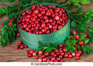 schließen, preiselbeere, auf, lingonberry, oder