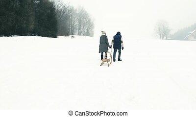 schlitten, winter, paar, spaziergang, day., ziehen, älter