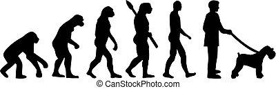 schnauzer, ミニチュア, 進化