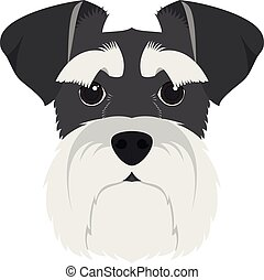 Schnauzer dog isolated on white background vector...