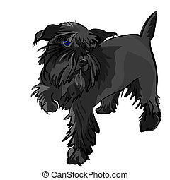 schnauzer, miniatura, vector, perro negro