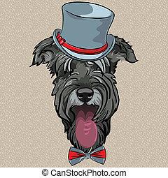 schnauzer, rigolote, chien, vecteur, hipster, dessin animé