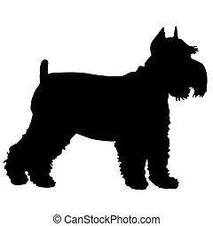 Schnauzer Silhouette - A black silhouette of a Schnauzer...