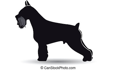 schnauzer, vektor, silhouette, hund