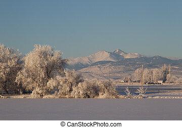 schnee kappe bedeckt, sehnt spitze, nach, a, winter, sturm, mit, bereift, eis, bäume, in, der, vordergrund