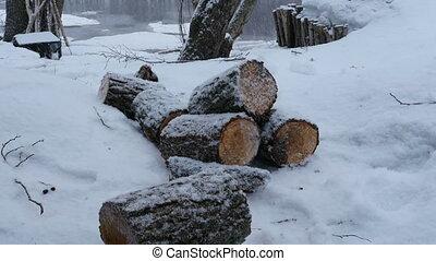 schneefall, winterlandschaft