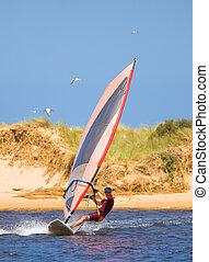 schnell, bewegen, windsurfer, auf, der, wasser