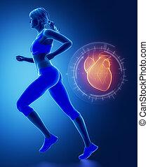 schnittstelle, herz, jogging, frau
