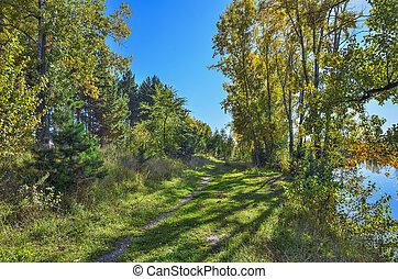 schoenheit, bunte, natur, -, herbstlich, see, herbstlandschaft