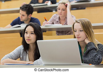 scholieren, gebruikende laptop, zaal, lezing