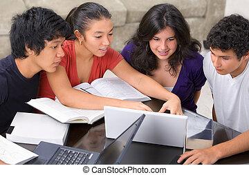 scholieren, multi, groep, studeren, ethnische