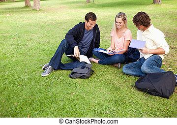 scholieren, park, angle-shot, drie, hoog