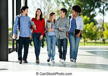 scholieren, wandelende, college universiteitsterrein, samen