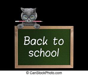 school, back, potlood, kat, pupil