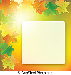 School board on colorful background