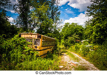 School bus in a junkyard.
