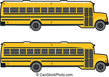 Two modern yellow school buses shown as a profile.
