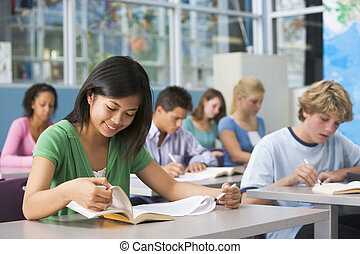 School children in high school class