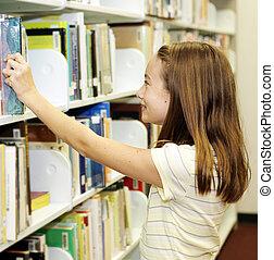 School Library - Shelves