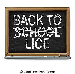 School Lice Problem - School lice problem as a medical...