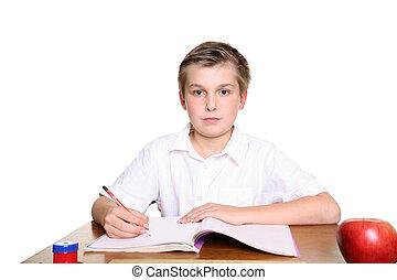 School pupil at desk