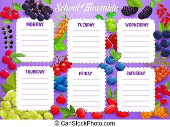 School timetable with berries. Cartoon vector week schedule template with hawthorn, black chokeberry, cranberry and grapes or sea buthorn. Time table with viburnum, honeysuckle, rose hip and bilberry