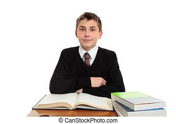 Schoolboy at desk