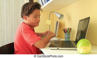 Schoolboy doing his homework with laptop