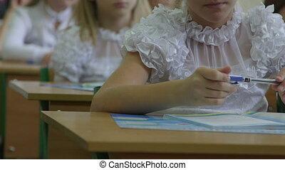 Schoolgirls at primary school