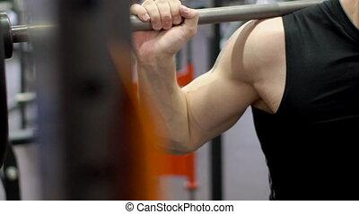 schouders, barbell, gym., crouches, deel, mannelijke , romp