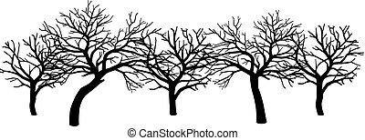 schrikaanjagend, groep, bladeren, bomen, zonder, black , blote