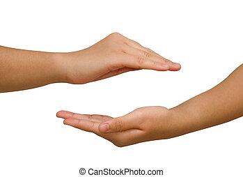 schuetzen, hände, holding., etwas, zwei